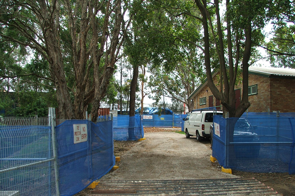 Managing Trees on Development Sites